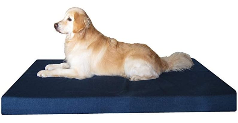 orthopedic bed for dogs