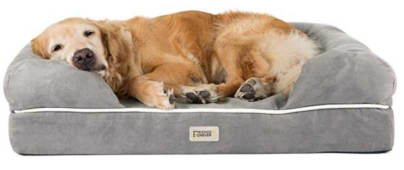 friends forever dog beds